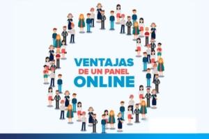 El proceso de la Encuesta Online
